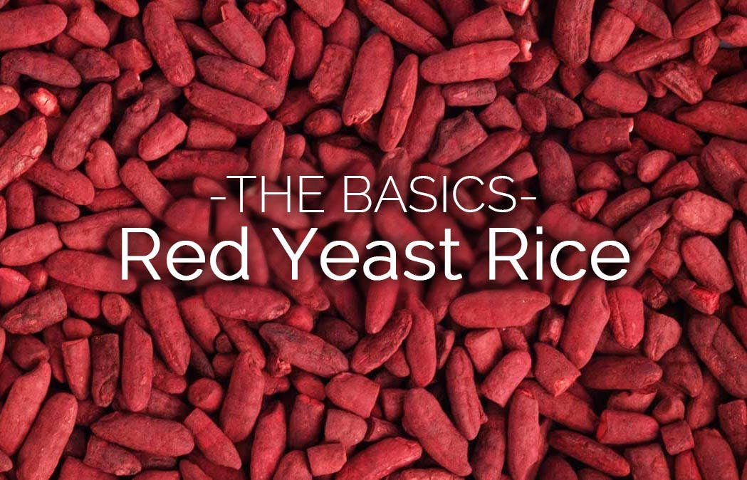 the basics red yeast rice ask joe dimatteo